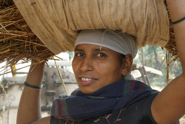 Indian farm worker - Ardea International - Modern Slavery | Human Rights | Sustainability