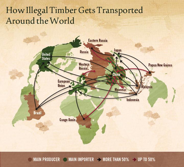 Illegal Logging Map 1