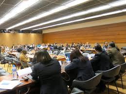 image UN forum Geneva