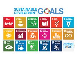 Sustainable Development Goals, Ardea