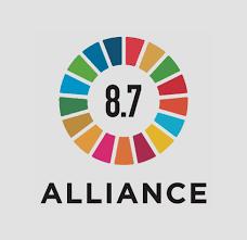 SDG8.7 , SDGs , Ardea