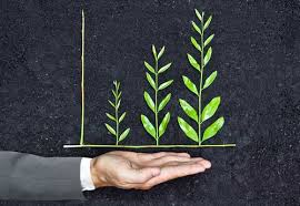 sustainable corporate governance Ardea